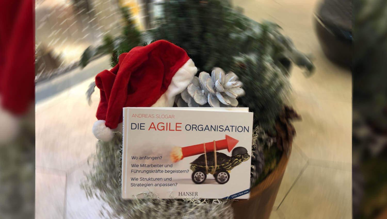 12/18 – Buch des Monats: Die agile Organisation