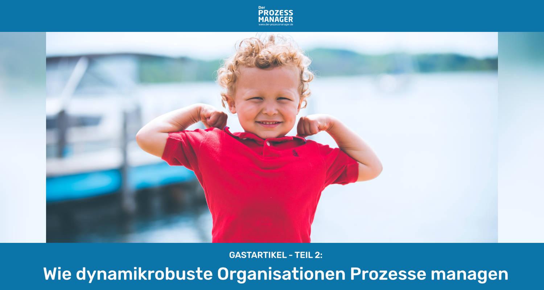 Wie dynamikrobuste Organisationen Prozesse managen (Teil 2)